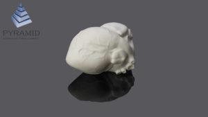 3d печать медицинского макета сердца по SLS технологии